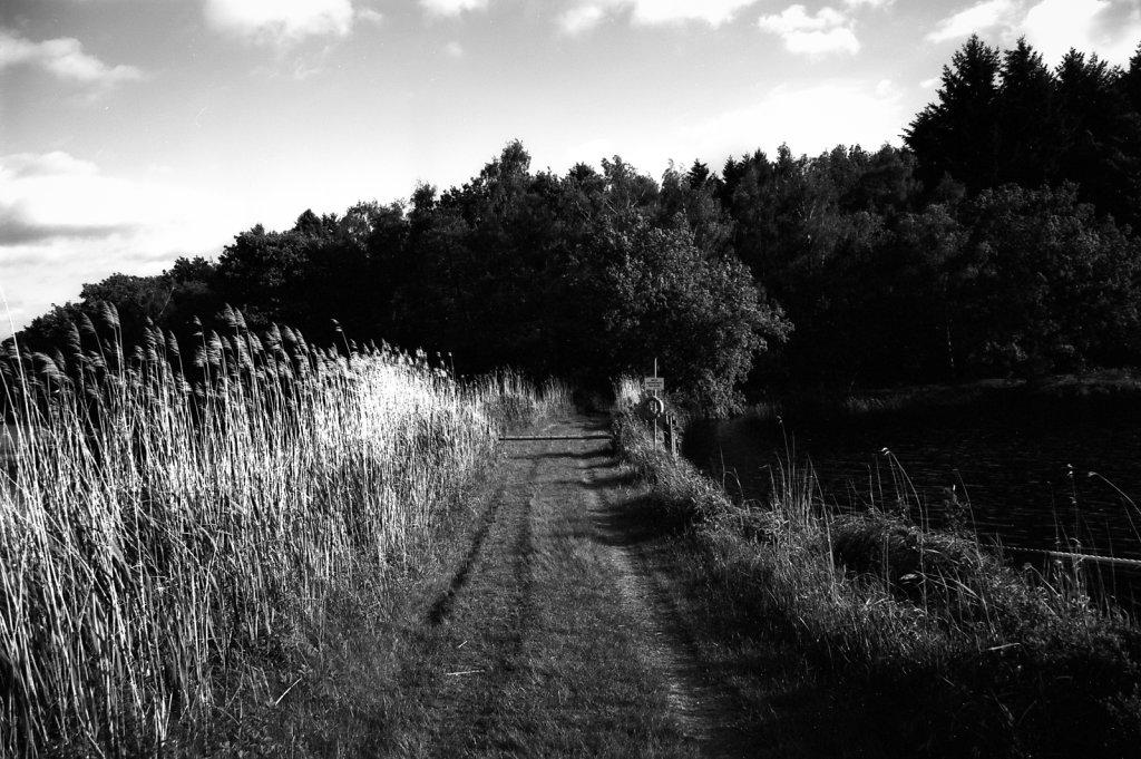 Bredenbeker Teich #1