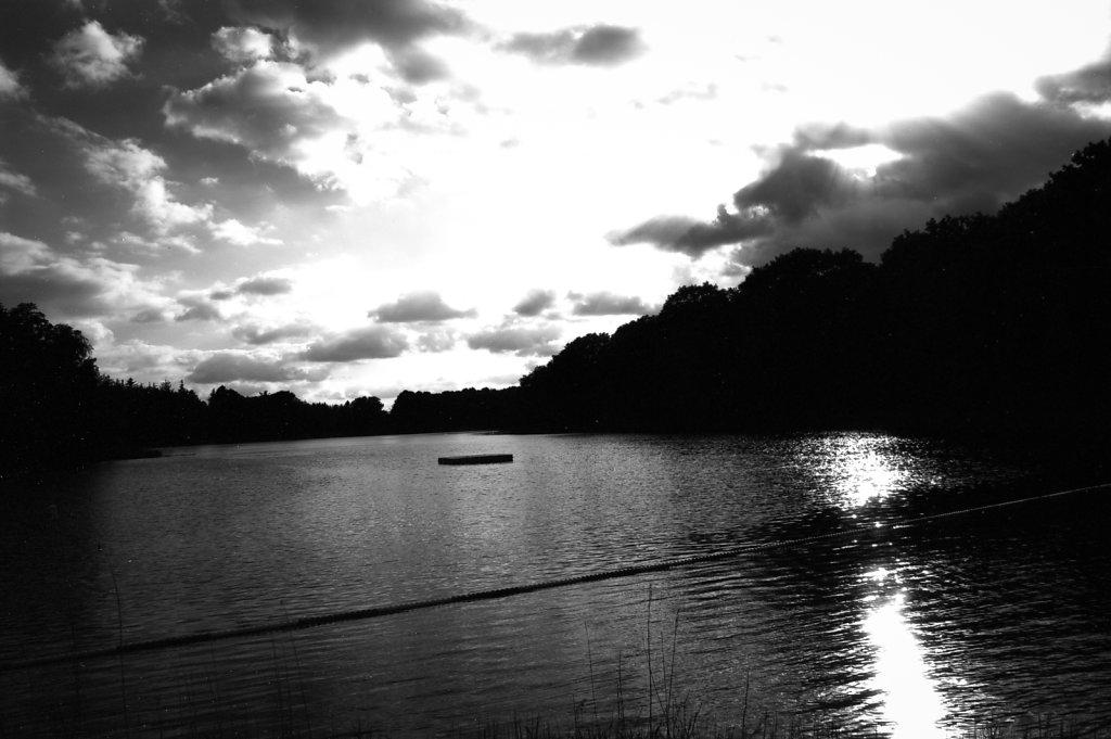 Bredenbeker Teich #2