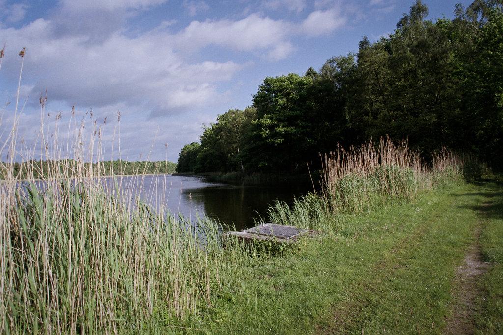 Bredenbeker Teich #4