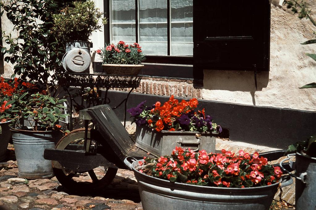 Die Blumenstraße
